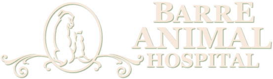 Barre Animal Hospital